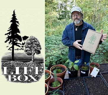 the life box - The Life Box