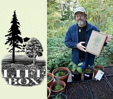 the life box - The Life Box: una caja de vida para reforestar el planeta
