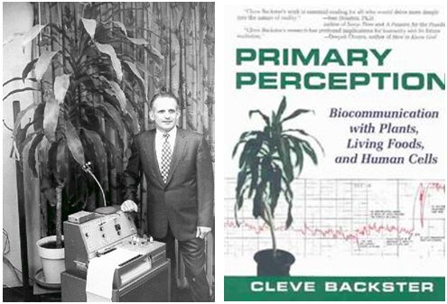 cleve - cleve backster