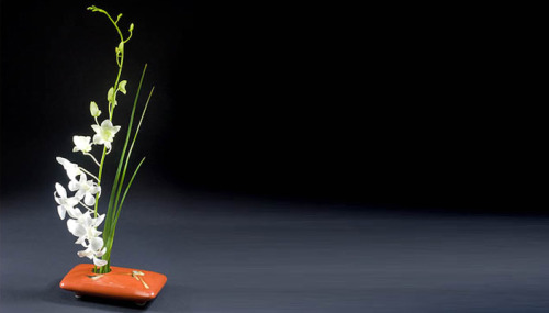 ikebana vases background - ikebana