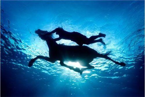 zena2 - El arte acuático de Zena Holloway