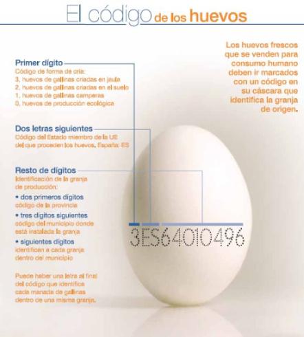 codigo de los huevos1 - El código del huevo