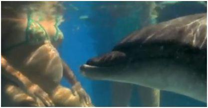 delfin - Parto en el agua con la ayuda de delfines: historia, beneficios y las investigaciones de Igor Tcharkowsky