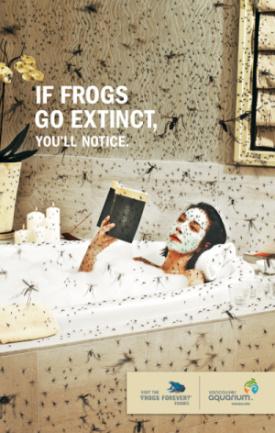 si las ranas se extinguen banera - si las ranas se extinguen