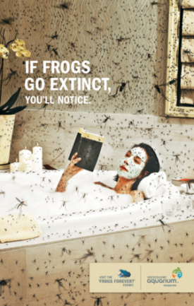 si las ranas se extinguen banera - Y si las ranas desaparecen...