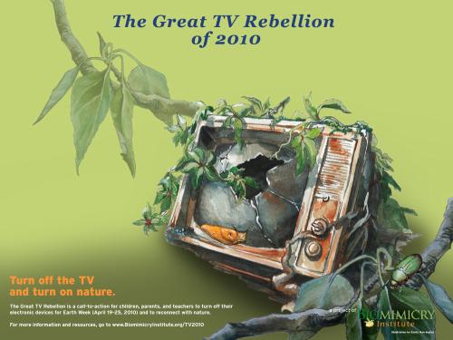 sin tele2 - semana sin-tele 2010