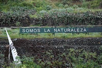 somos la naturaleza