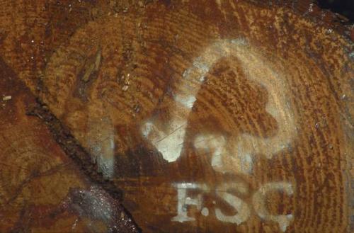 fsc - Certificacion FSC