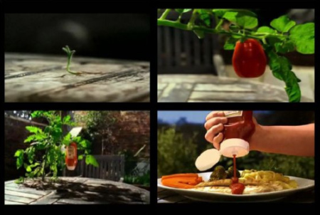 premio-sombra-2010-tortilla-de-silicona
