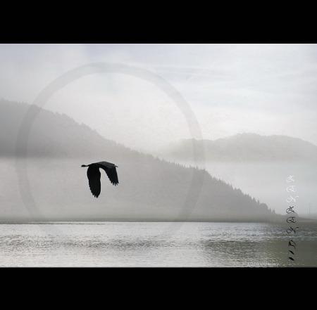 zen minds - Cómo Trabajar o Estudiar Menos Tiempo y Conseguir Mejores Resultados (2/2)