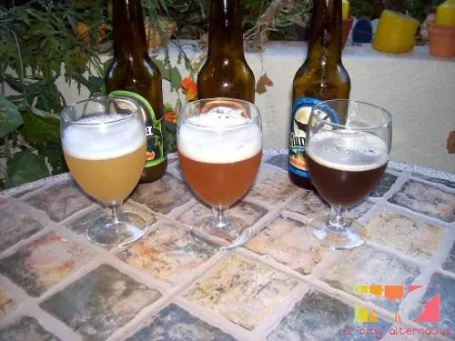 cerveza artesana ecológica1 - Cata de 3 cervezas ecológicas Lluna de Bodega Artesana