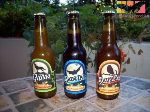 cerveza artesana ecológica21 - Cata de 3 cervezas ecológicas Lluna de Bodega Artesana
