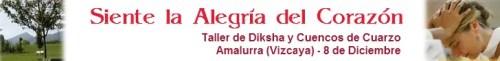 Diksha y Cuencos de Cuarzo 8 dic 2010
