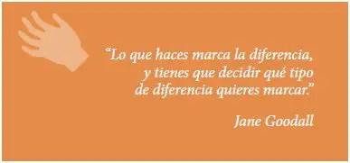 """jane2 - """"Debemos crear líderes más éticos para sobrevivir"""": crónica de la visita de Jane Goodall a España y boletin"""