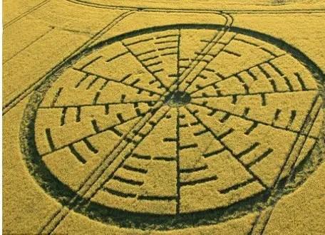 circulo de las cosechas - circulo de las cosechas
