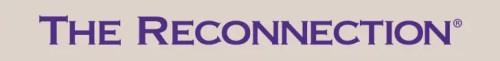 Reconnection banner 728x90 500x61 - Empresas que han confiado en El Blog Alternativo en Abril 2011