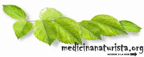 medicina naturista - medicina naturista