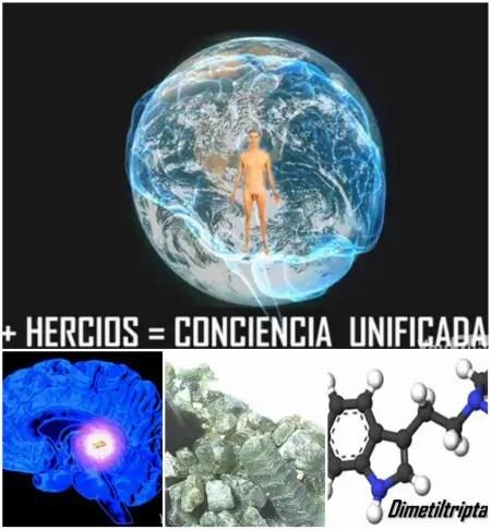 Collage de Picnik1 - NOOSFERA, le mente del planeta. Bianca Atwell en Barcelona