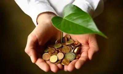 ecologia economia - ECOlogía y ECOnomía: ¿son compatibles?, dinos qué opinas repondiendo a la encuesta que te proponemos. Los viernes de Ecología Cotidiana