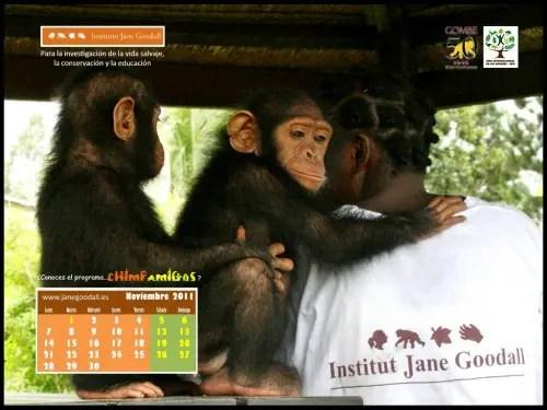 Calendario IJGE nov2011 1024 - Calendario IJGE nov2011 1024