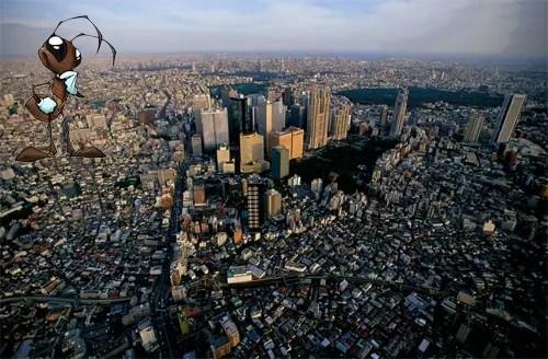 Hormiguero de Tokio