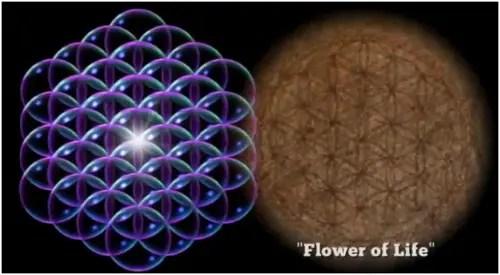 thrive-la flor de la vida