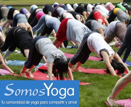 """somosyoga - """"El Yoga tiene más sentido que nunca"""". Entrevista a SOMOS YOGA.com, comunidad online para compartir y amar"""