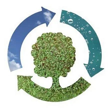 Tendencias de ecologia cotidiana - Tendencias de ecologia cotidiana