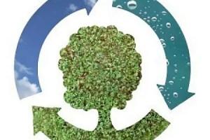 Tendencias de ecologia cotidiana - 5 tendencias en alza para ser más ecológico en el día a día. Los viernes de Ecología Cotidiana