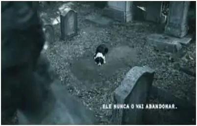 abandono - campaña abandono animal