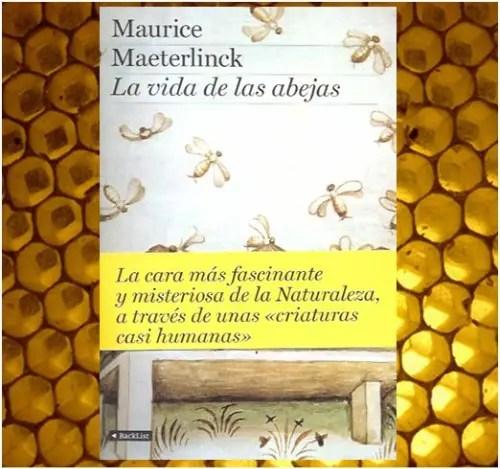 abejas21 - la vida de las abejas
