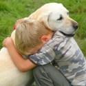 abrazo perro - El poder de los abrazos