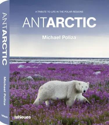 antarctic1 - antarctic