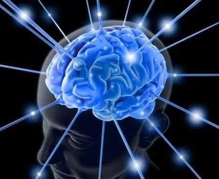 brainconectada -