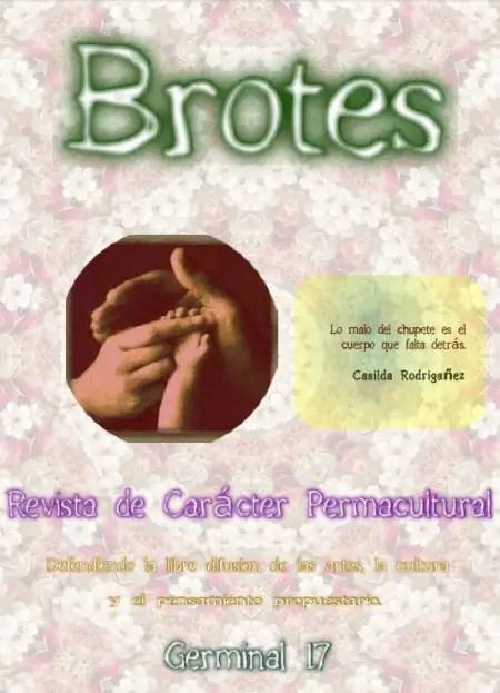 brotes 17 - brotes 17