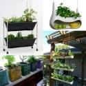 hierbas en la cocina - Ideas para cultivar plantas aromáticas en casa