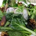 img 3421copy - Curso de cocina vegetariana en Galicia del 9 al 12 de octubre del 2009