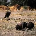 """kevin - UNA FOTO DE PESADILLA: la enseñanza real de Kevin Carter y la ficción del cortometraje """"Una centésima de segundo"""""""