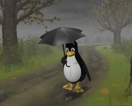lluvia - lluvia