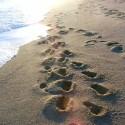 """pasos - Los """"100 pasos hacia la felicidad"""" ya están muy cerca"""