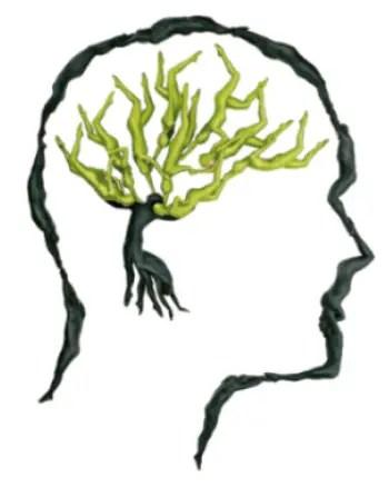 pensamiento verde3 - pensamiento-verde