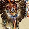 """plumas - Profecía india de """"Los Guerreros del Arco Iris"""""""