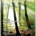 revista - Cómo captar energía de los árboles: revista Mundo Nuevo 75