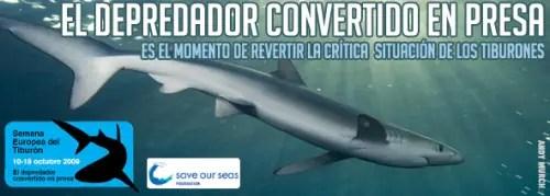semana europea del tiburon 2009 - Semana Europea del Tiburon 2009