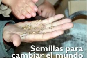 """semillas1 - """"LA AGRICULTURA NATURAL es el único futuro posible"""": entrevista a Panos Manikis, discípulo de Fukuoka"""