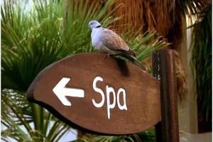 spa - Los beneficios de un Spa holístico