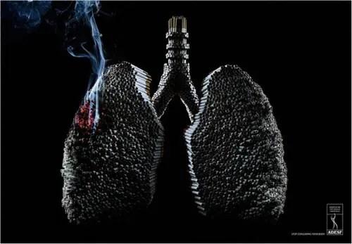 tabaco - tabaco