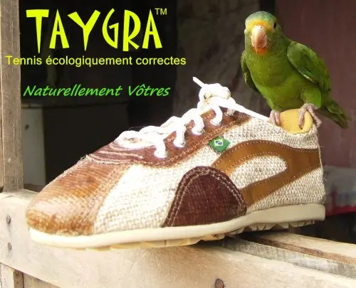 taygra1 - taygra