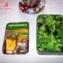 tes3 - INFUSIONES: 50 fichas de recetas