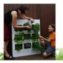 urb garden xavier calluaud - Cultivando y compostando en muy poco espacio con el Urb Garden vertical